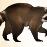 Rockfur_Raccoon_concept_art