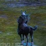 guild-wars-2-mini-pet-Modniir-Berserker