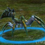 guild-wars-2-mini-pet-forest-spider