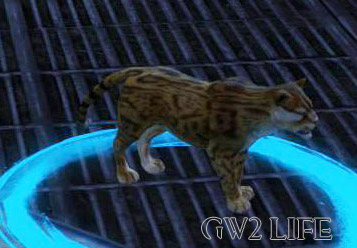 guild-wars-2-mini-pet-jungle-stalker