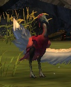 guild-wars-2-mini-pet-pink-moa