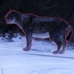 guild-wars-2-mini-pet-snow-leopard
