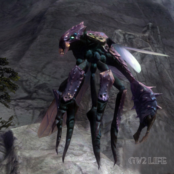 guild-wars-2-mini-pet-wasp