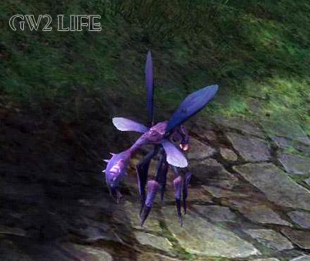 guild-wars-2-mini-pet-wasp