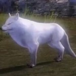 Alpine_Wolf_gw2_ranger_pets