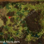 Iron_Ore_Brisban_Wildlands