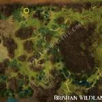 Rich_Silver_Vein_Brisban_Wildlands