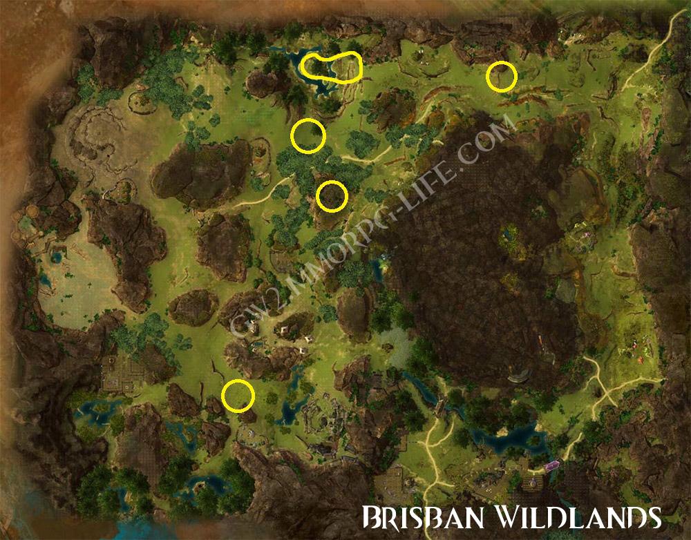 Root_Vegetables_Brisban_Wildlands