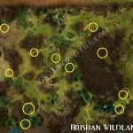 Silver_Ore_Brisban_Wildlands