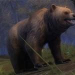 juvenile_Brown_Bear_gw2_ranger_pets