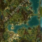 juvenile_Jungle_spider_Caledon_Forest_location