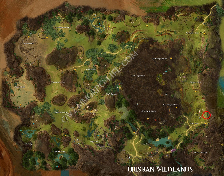 juvenile_fern_hound_Brisban_Wildlands_location