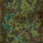 juvenile_marsh_drake_Metrica_Province_location