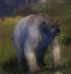 juvenile_polar_bear_gw2_ranger_pets