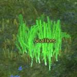 scallions_gw2