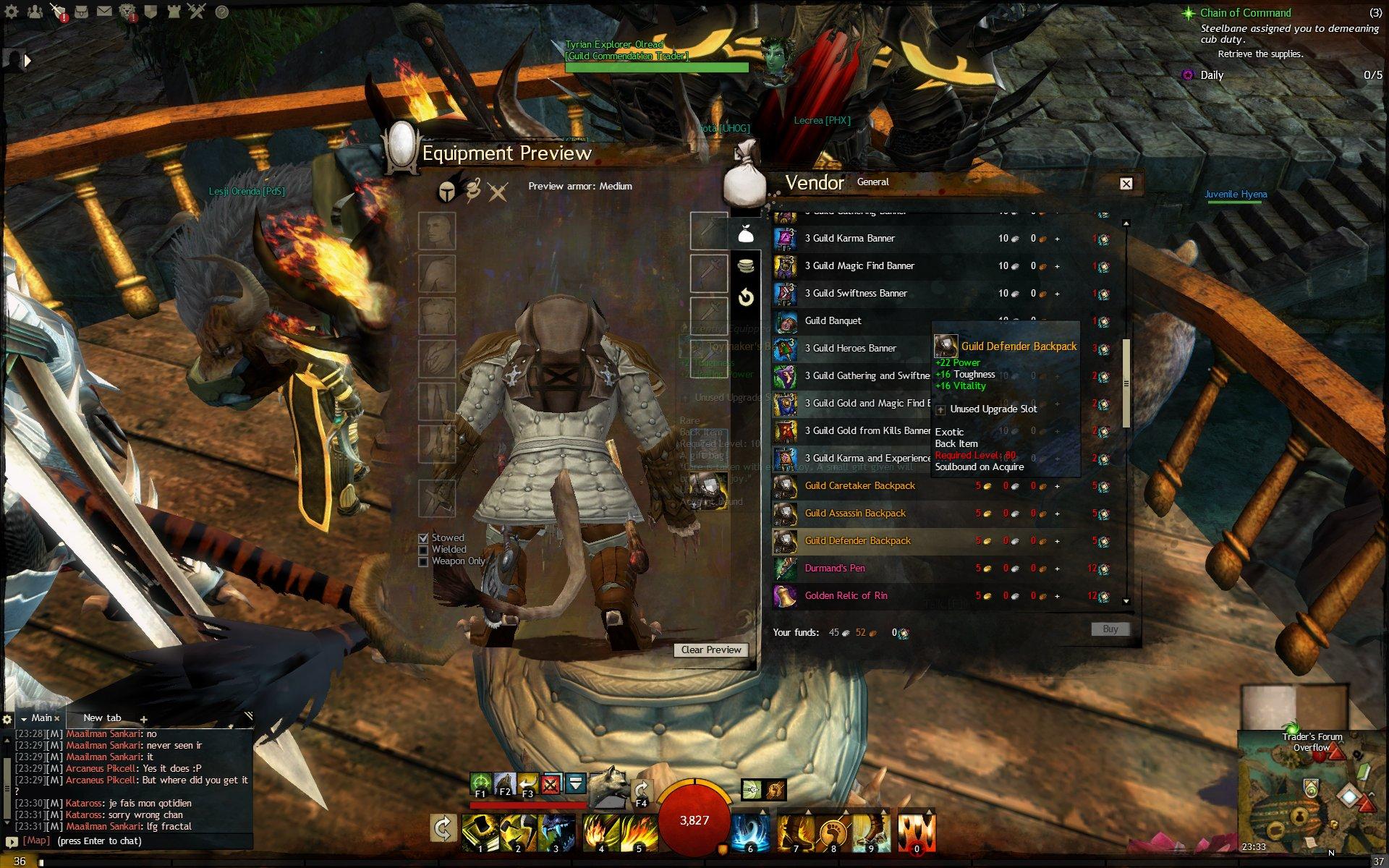 Gw2_2013_02_26_23_33_32_852 - Guild Wars 2 Life