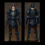 gw2 settlers reinforced scalef armor
