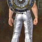 GW2 Aetherized Shield Skin
