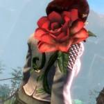 gw2 Desert Rose