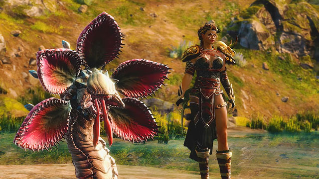 guild wars 2 path of fire expansion launch time